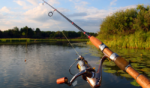 Best Bass Fishing Rod Reviews, Bass Fishing Rod Reviews, Bass Fishing Rod, Online Fishing Rod, Cheap Fishing Rod, Fishing Rod Buying Guide, Fishing Rod Rating, Bass Fishing Rod Compare, Bass Fishing Rod Comparison,